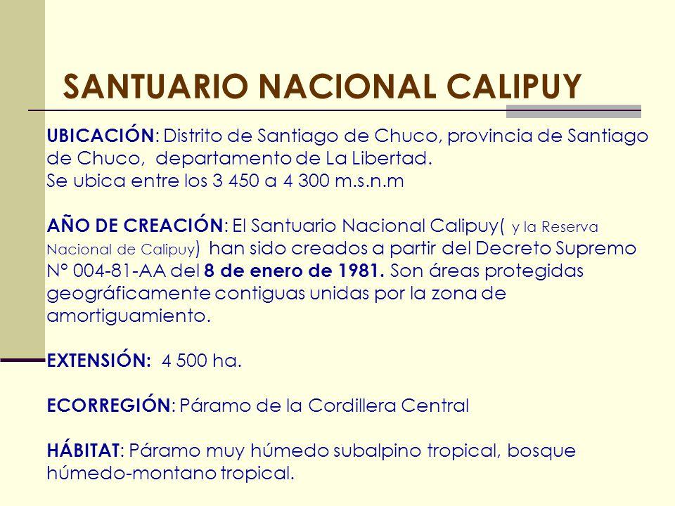 SANTUARIO NACIONAL CALIPUY