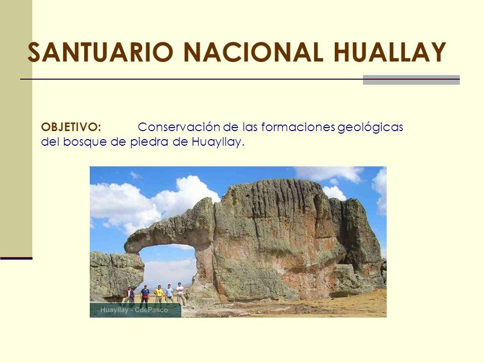 SANTUARIO NACIONAL HUALLAY