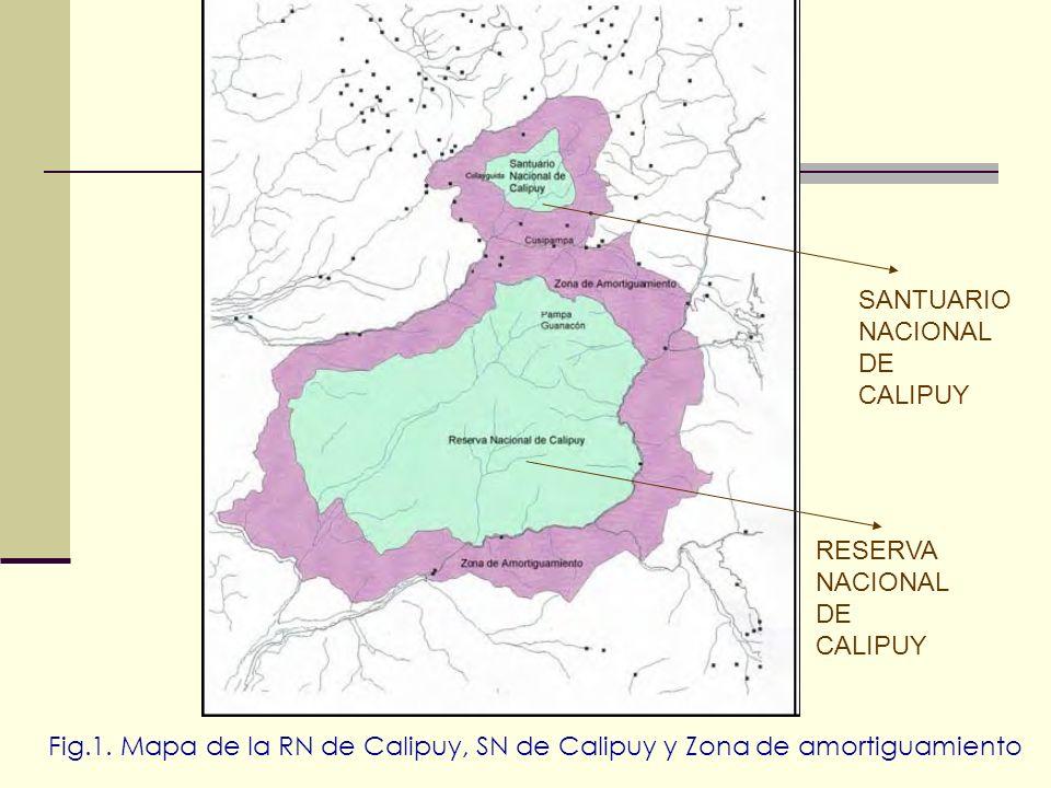 SANTUARIO NACIONAL. DE. CALIPUY. RESERVA. NACIONAL.