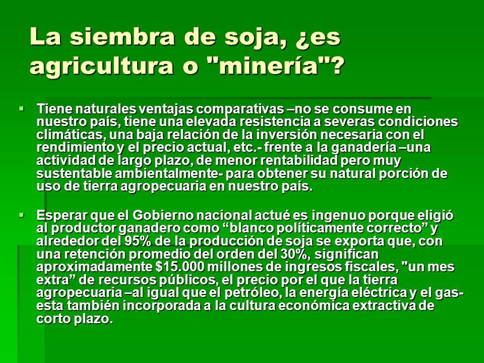 La siembra de soja, ¿es agricultura o minería