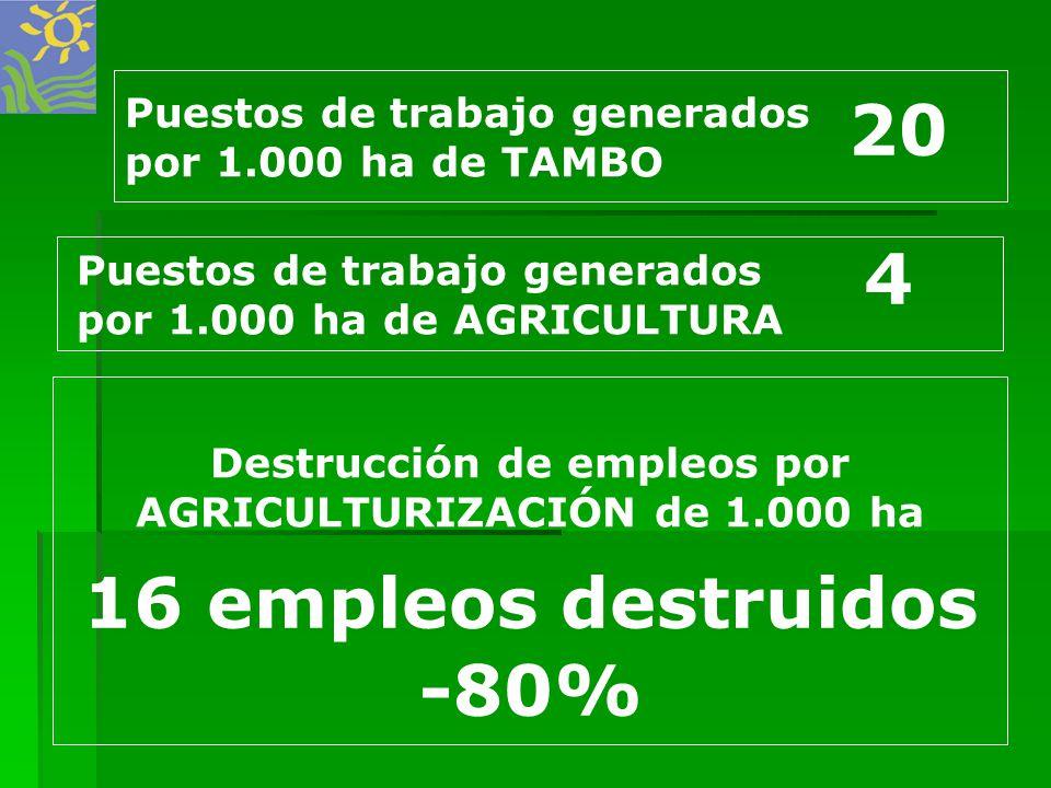Destrucción de empleos por AGRICULTURIZACIÓN de 1.000 ha