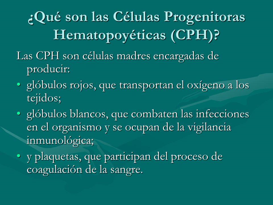 ¿Qué son las Células Progenitoras Hematopoyéticas (CPH)