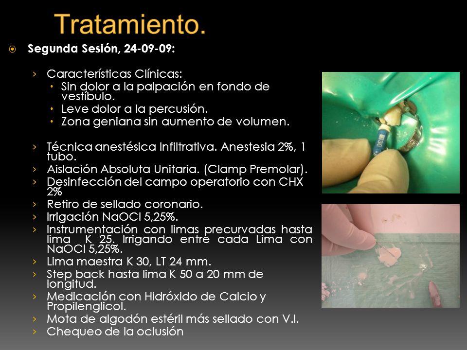 Tratamiento. Segunda Sesión, 24-09-09: Características Clínicas: