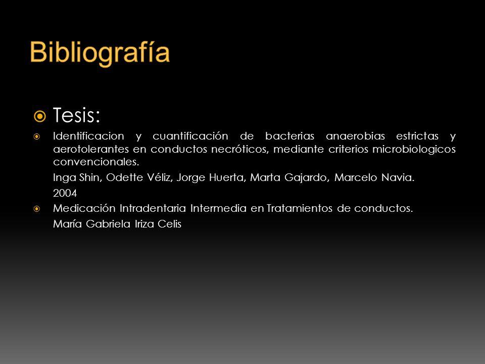 BibliografíaTesis:
