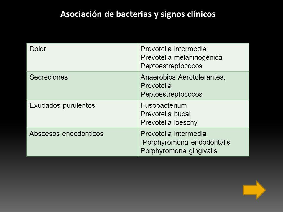 Asociación de bacterias y signos clínicos
