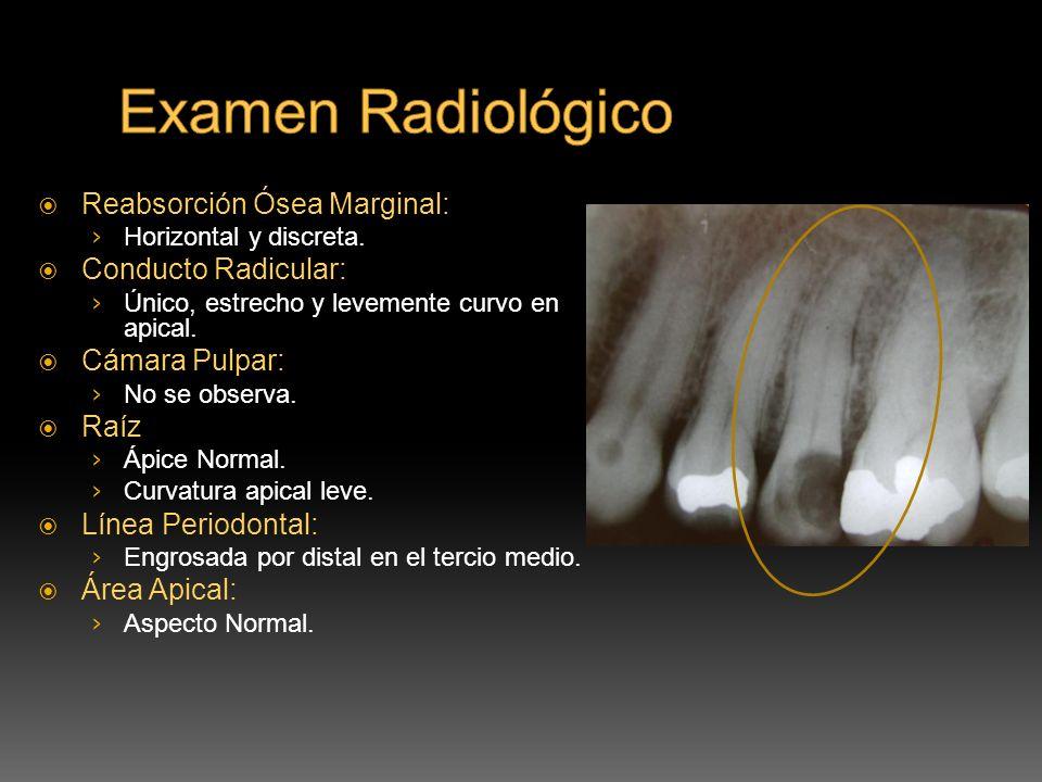 Examen Radiológico Reabsorción Ósea Marginal: Conducto Radicular: