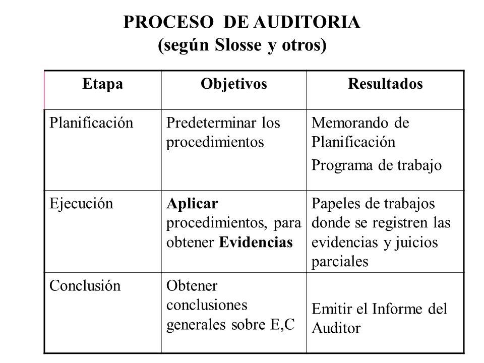 PROCESO DE AUDITORIA (según Slosse y otros)