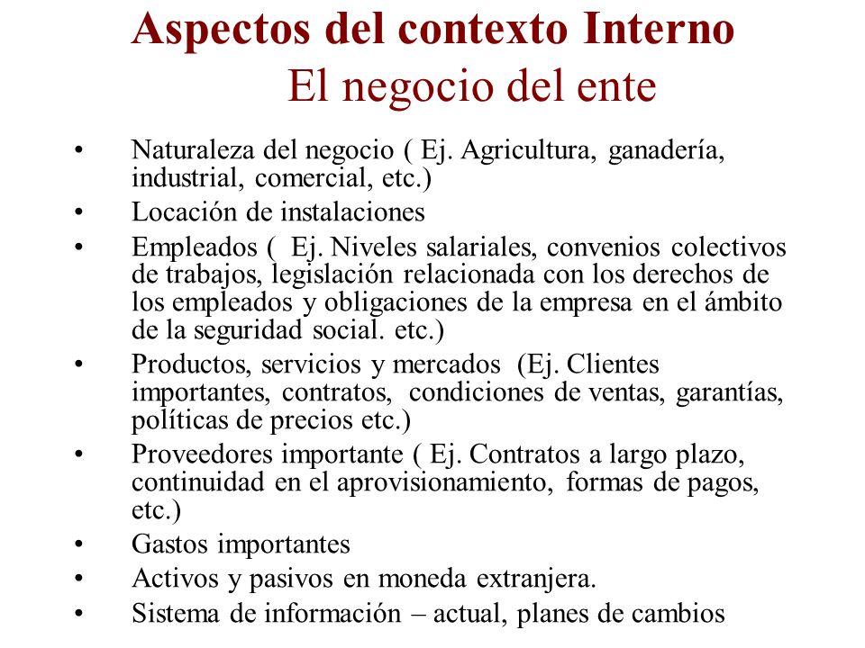 Aspectos del contexto Interno El negocio del ente