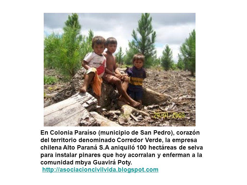 En Colonia Paraíso (municipio de San Pedro), corazón