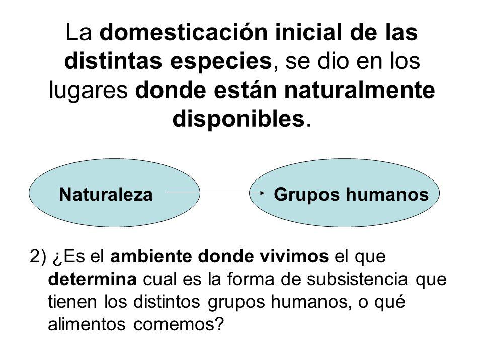 La domesticación inicial de las distintas especies, se dio en los lugares donde están naturalmente disponibles.