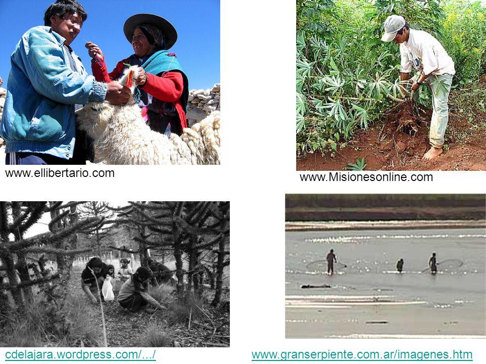 cdelajara.wordpress.com/.../ www.granserpiente.com.ar/imagenes.htm