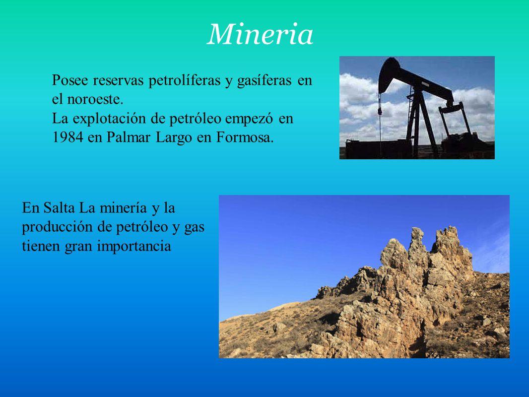 Mineria Posee reservas petrolíferas y gasíferas en el noroeste.