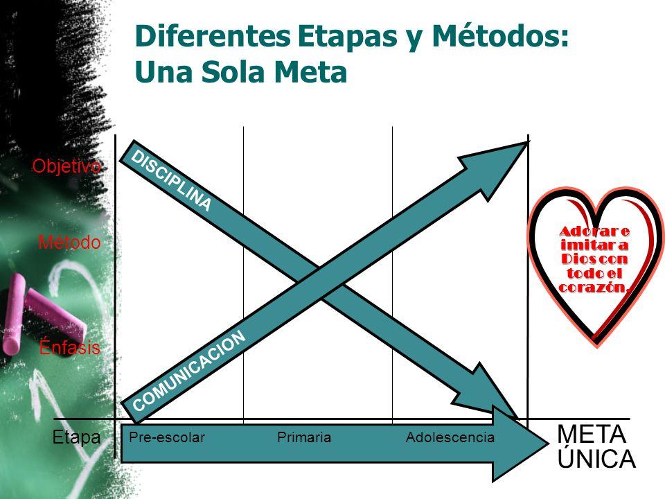 Diferentes Etapas y Métodos: Una Sola Meta