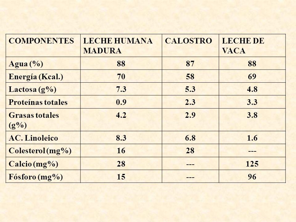 COMPONENTES LECHE HUMANA MADURA. CALOSTRO. LECHE DE VACA. Agua (%) 88. 87. Energía (Kcal.) 70.