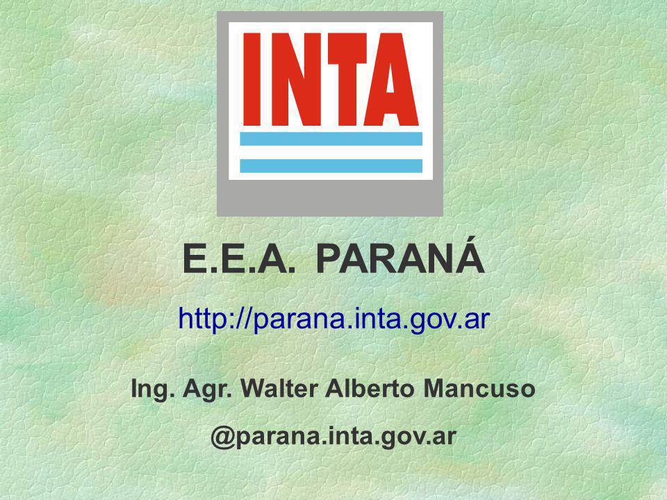 Ing. Agr. Walter Alberto Mancuso