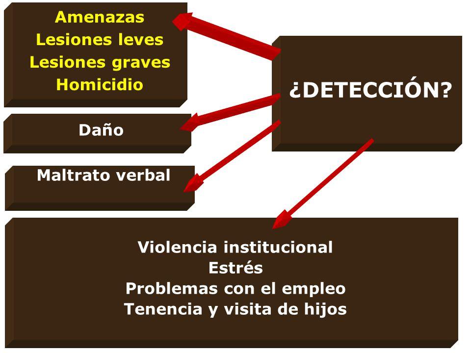 ¿DETECCIÓN Amenazas Lesiones leves Lesiones graves Homicidio Daño