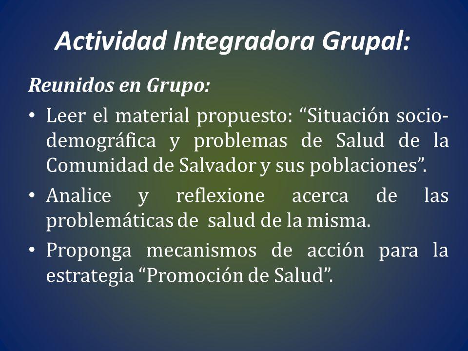 Actividad Integradora Grupal: