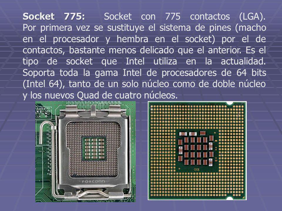 Socket 775: Socket con 775 contactos (LGA)