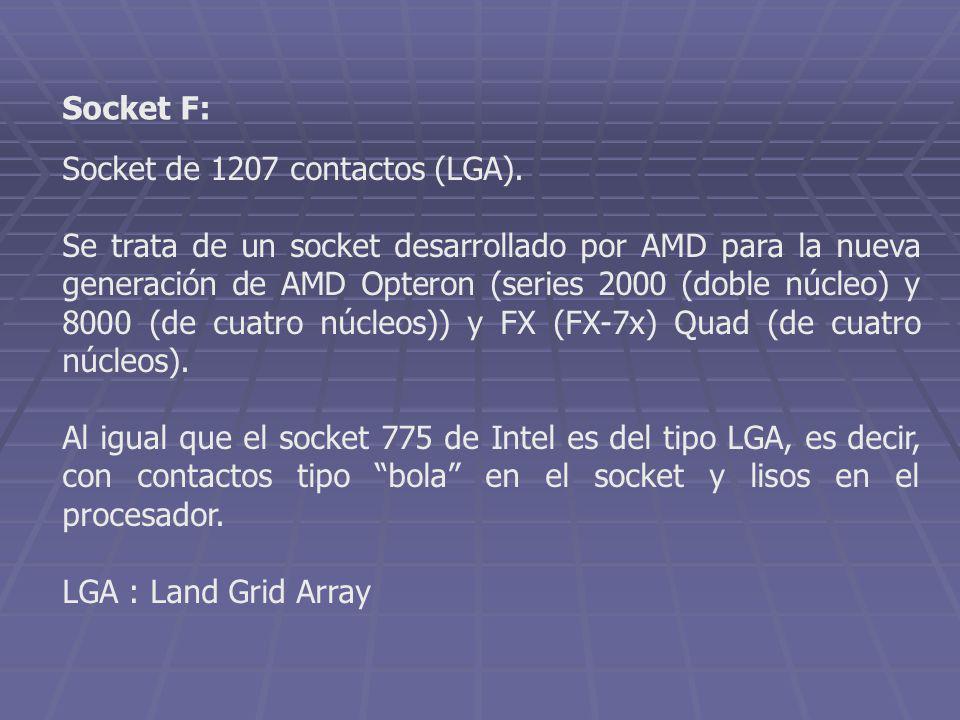 Socket F: Socket de 1207 contactos (LGA).