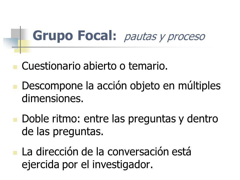 Grupo Focal: pautas y proceso