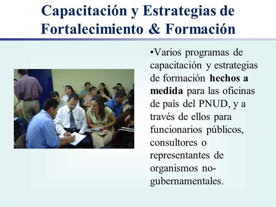 Capacitación y Estrategias de Fortalecimiento & Formación