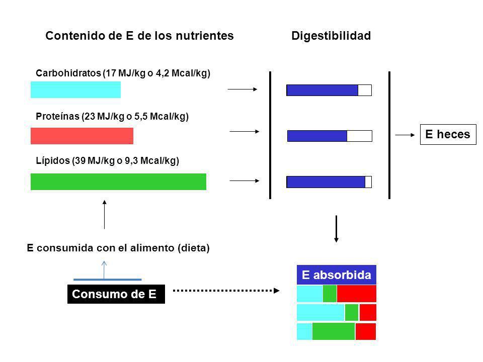 Contenido de E de los nutrientes Digestibilidad
