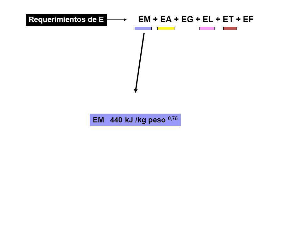 EM + EA + EG + EL + ET + EF Requerimientos de E EM