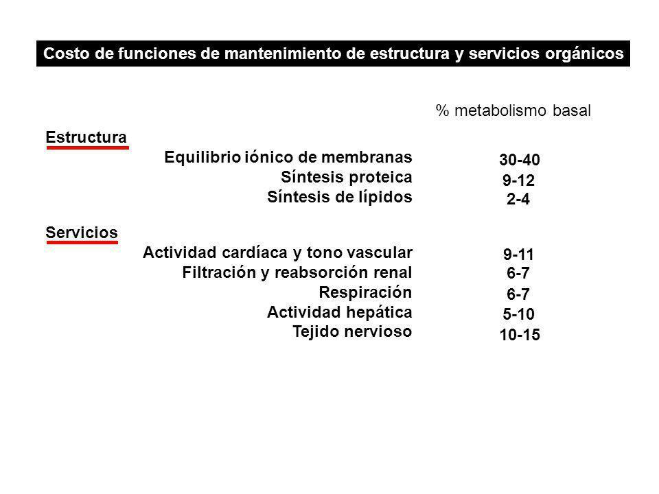 Costo de funciones de mantenimiento de estructura y servicios orgánicos