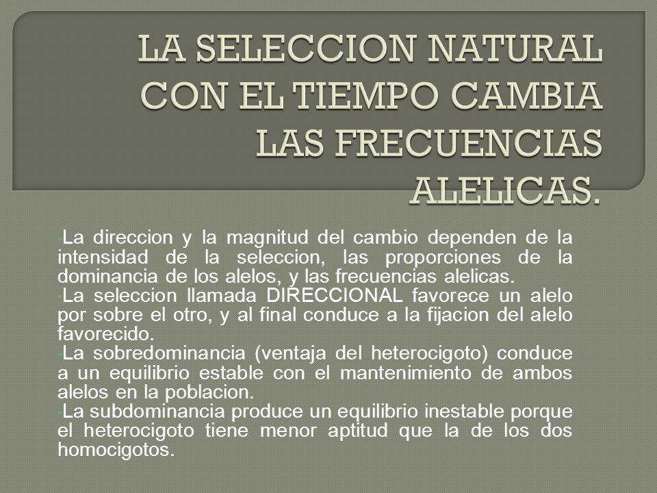 LA SELECCION NATURAL CON EL TIEMPO CAMBIA LAS FRECUENCIAS ALELICAS.