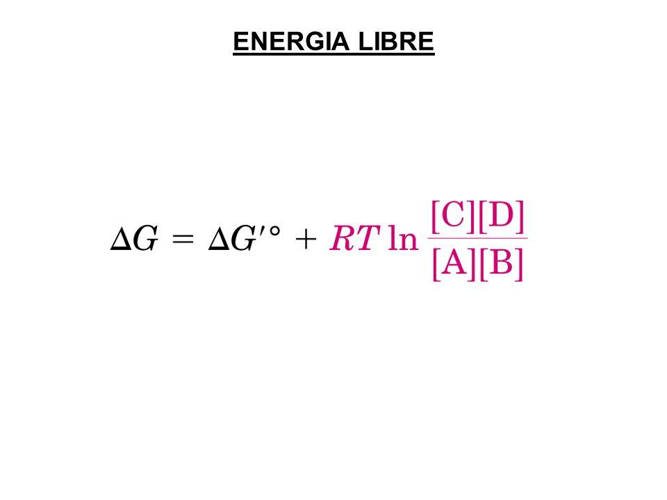 ENERGIA LIBRE