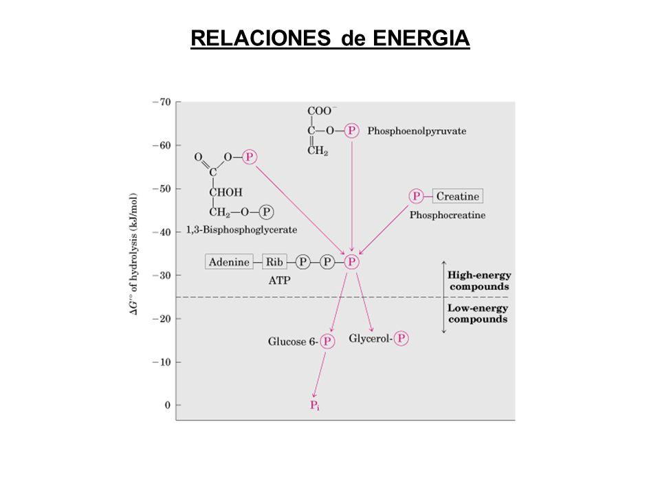 RELACIONES de ENERGIA
