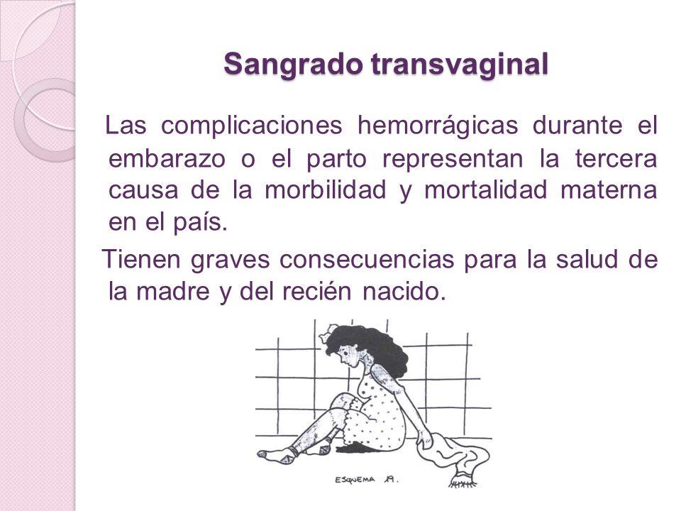 Sangrado transvaginal