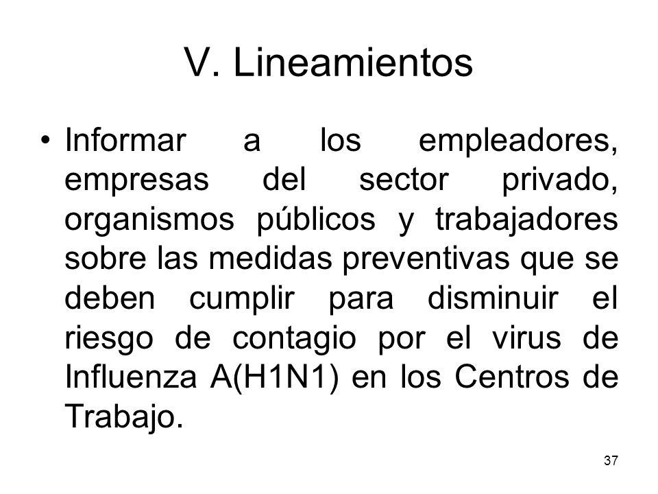 V. Lineamientos