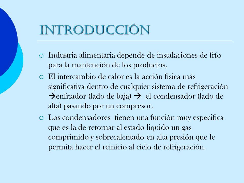 Introducción Industria alimentaria depende de instalaciones de frío para la mantención de los productos.
