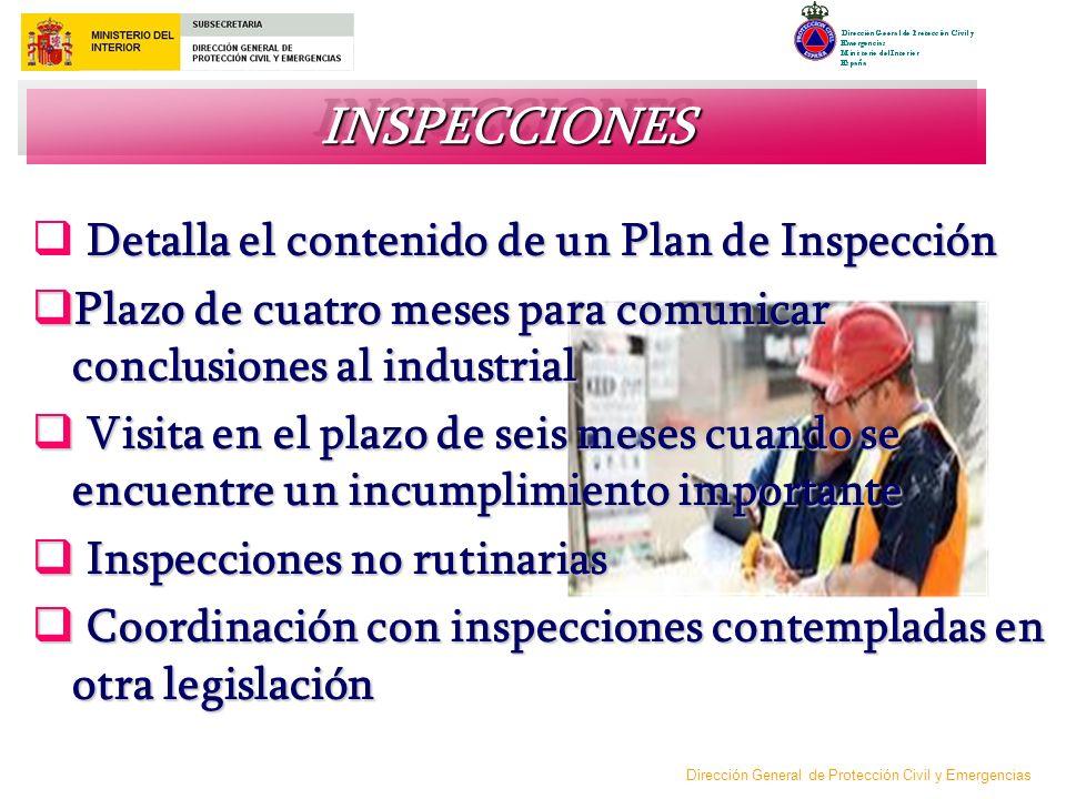 INSPECCIONES Detalla el contenido de un Plan de Inspección