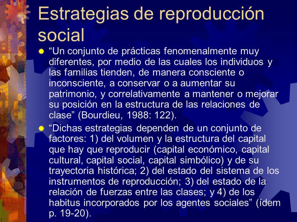 Estrategias de reproducción social