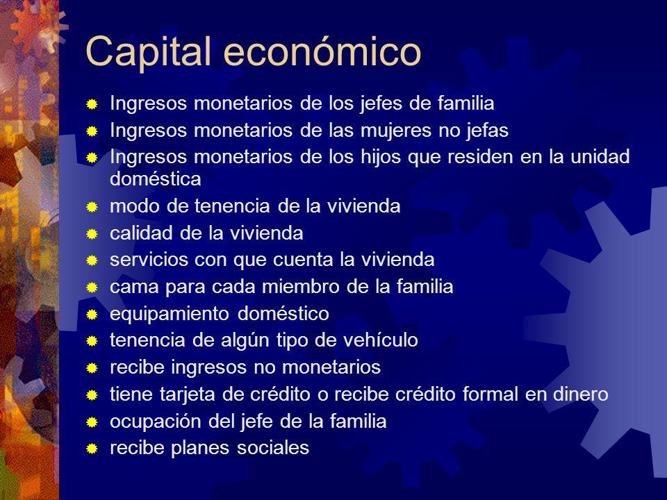Capital económico Ingresos monetarios de los jefes de familia