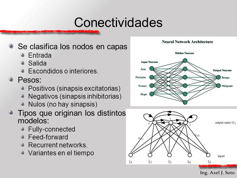 Conectividades Se clasifica los nodos en capas Pesos: