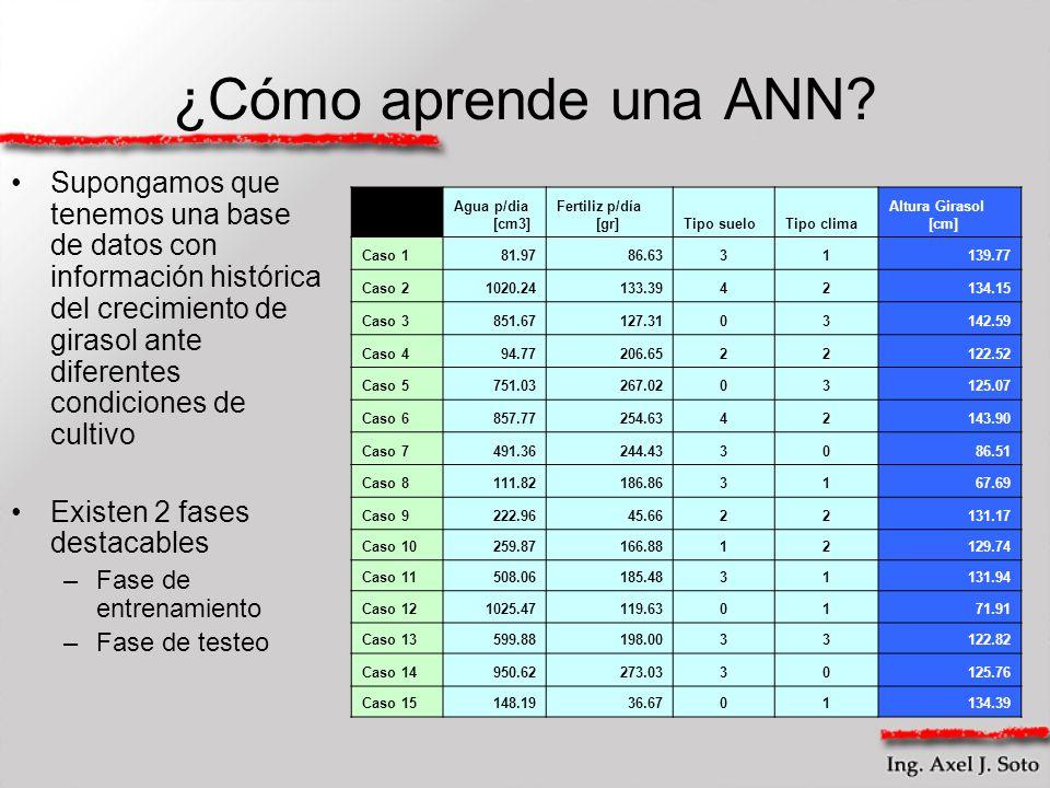 ¿Cómo aprende una ANN