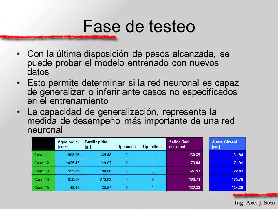 Fase de testeo Con la última disposición de pesos alcanzada, se puede probar el modelo entrenado con nuevos datos.