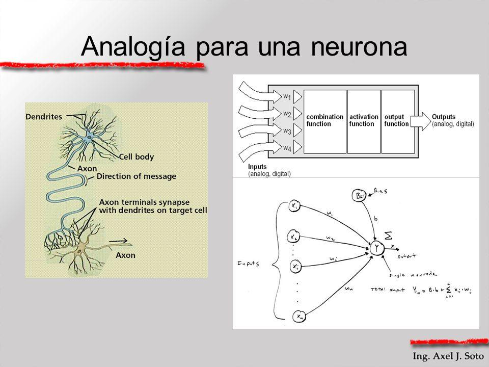 Analogía para una neurona