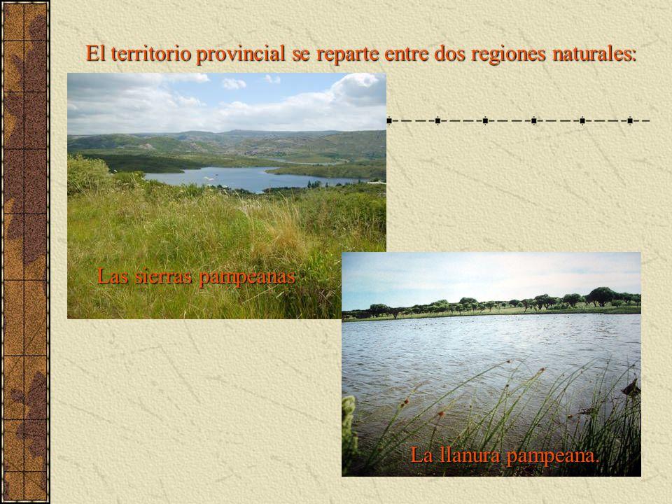 El territorio provincial se reparte entre dos regiones naturales: