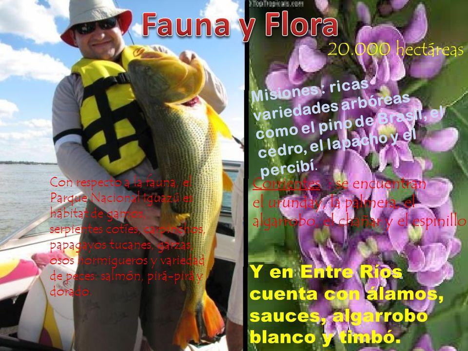 Fauna y Flora 20.000 hectáreas