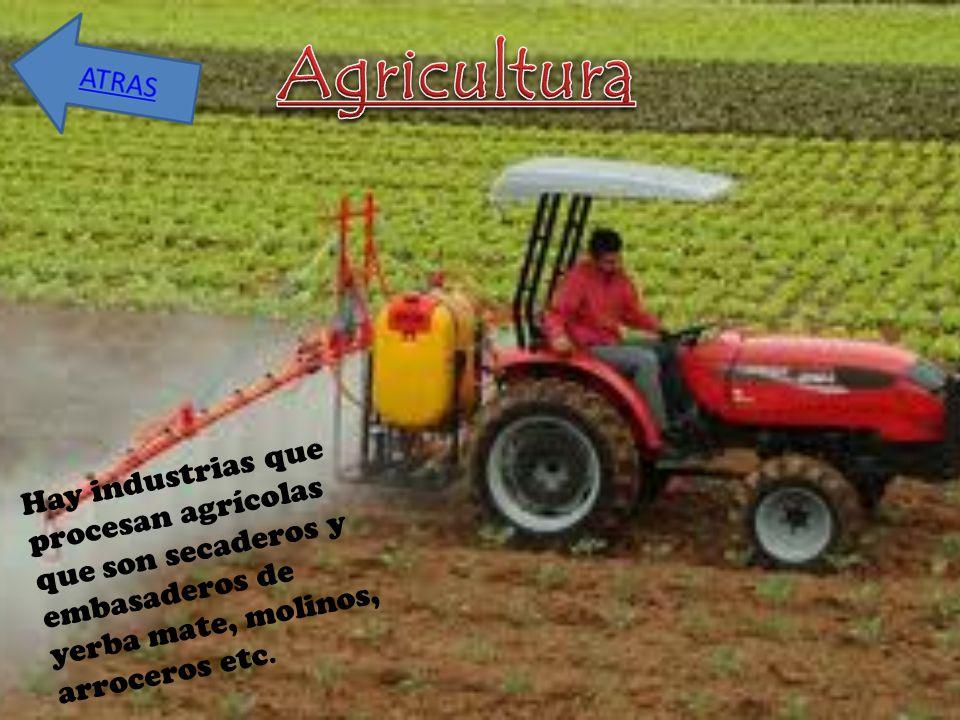 Agricultura Hay industrias que procesan agrícolas que son secaderos y embasaderos de yerba mate, molinos, arroceros etc.