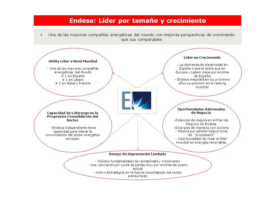Endesa: Líder por tamaño y crecimiento