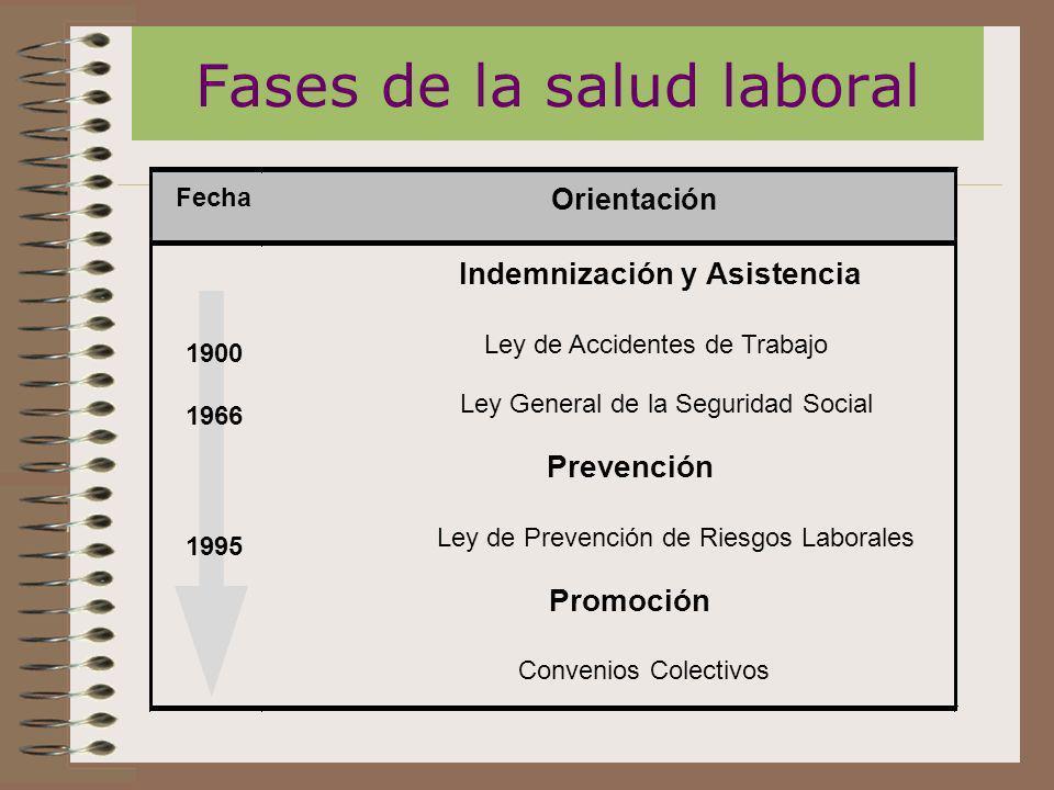 Fases de la salud laboral