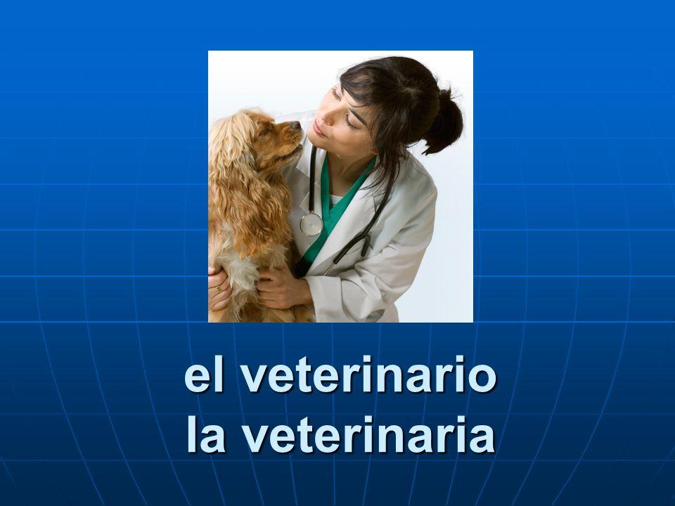 el veterinario la veterinaria