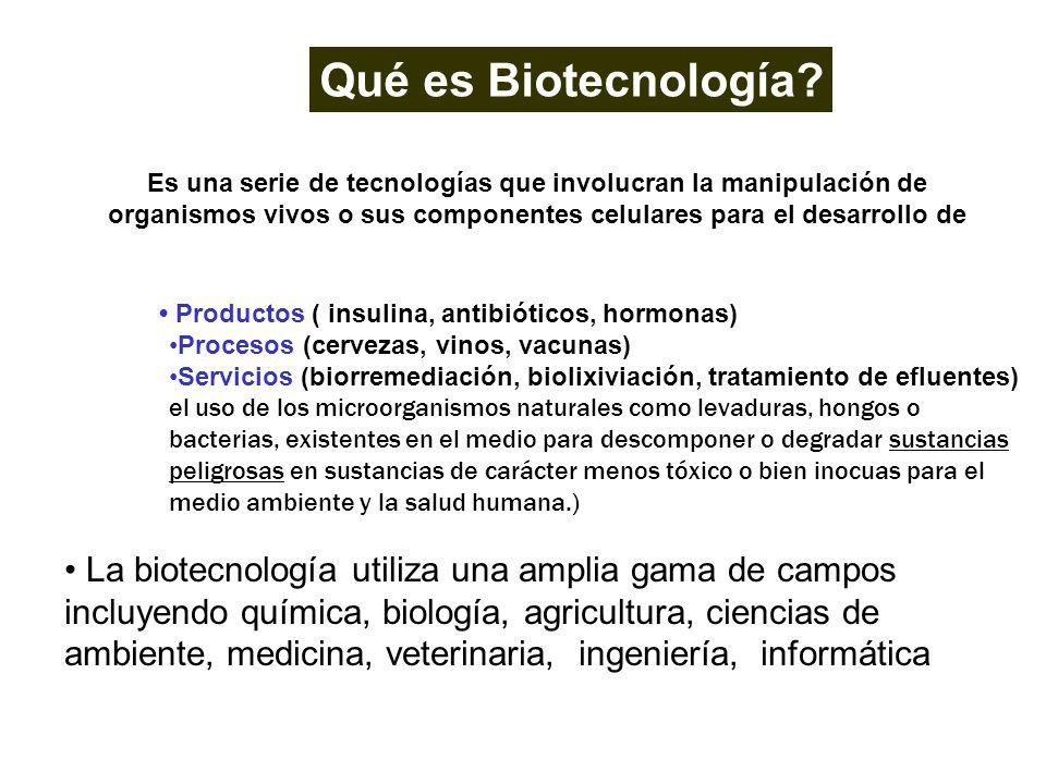 Qué es Biotecnología