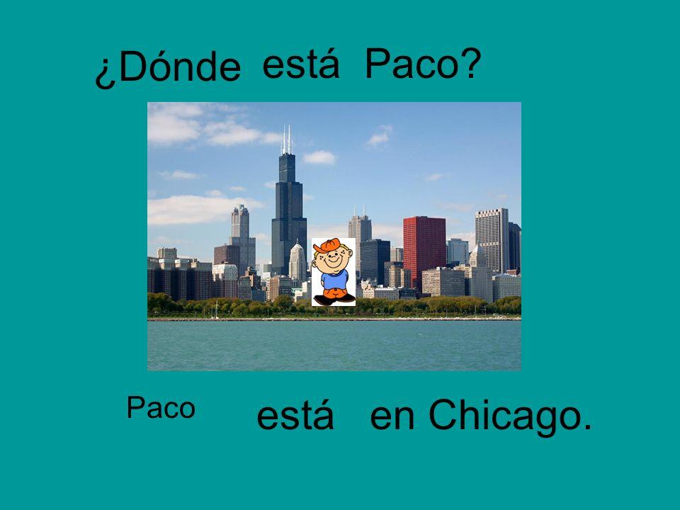 ¿Dónde está Paco Paco está en Chicago.