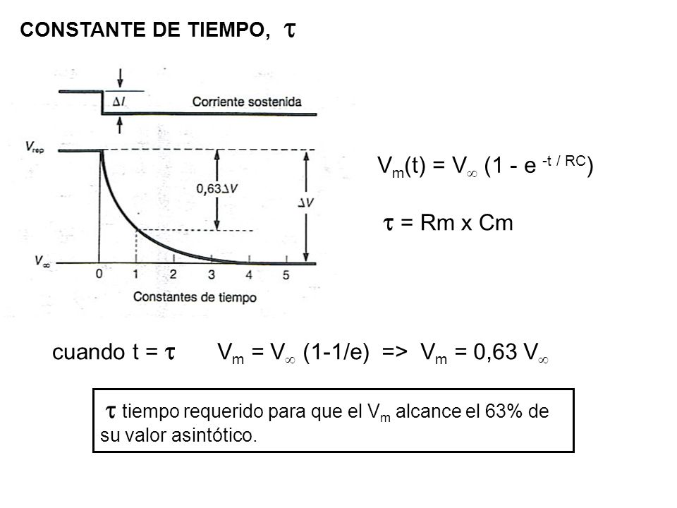 t = Rm x Cm Vm(t) = V (1 - e -t / RC) cuando t = t